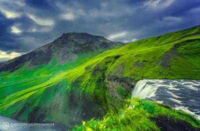 green wilderness